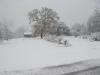 snow-in-oloh.jpg