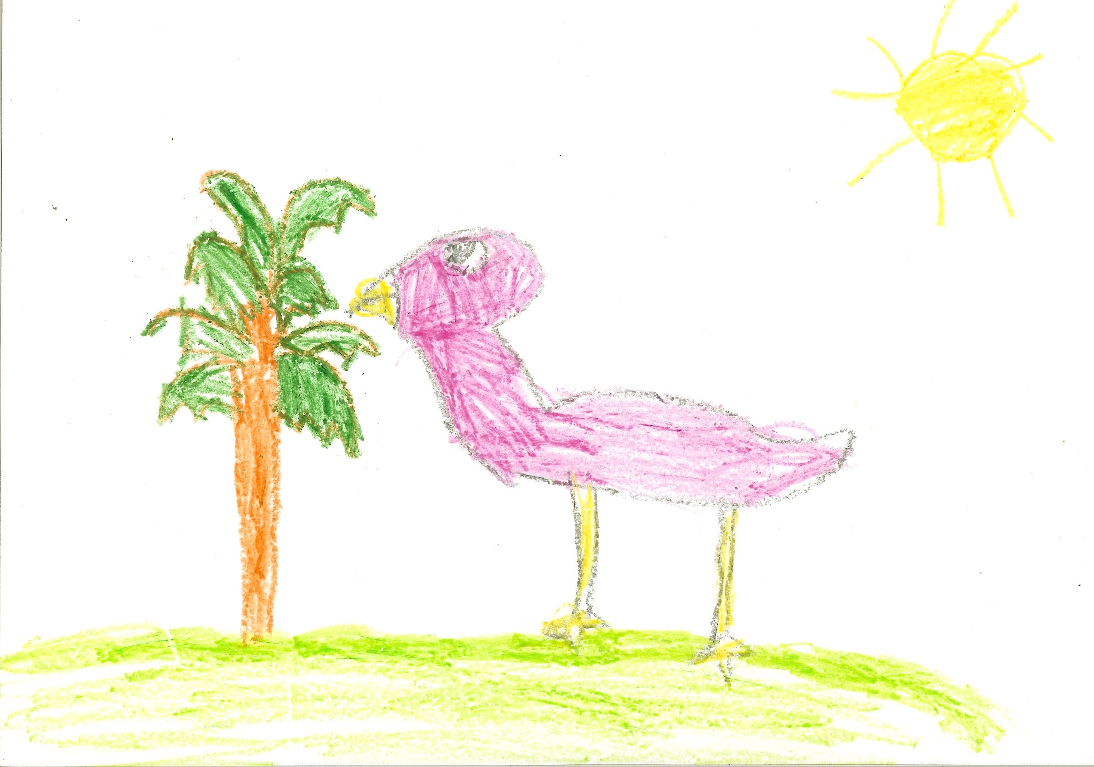 bella-flamingo-10-31-2009